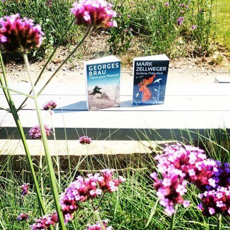 Mes deux réceptions du jour! Quel temps magnifique aujourd'hui... 🌻🌻🌻 Un jour idéal pour lire dehors, vous ne trouvez pas ? 🌸🌸🌸🌸🌸 #receptions #splivre #editionseauxtroubles #thriller #thrillerbook #markzellweger #georgesbrau #bookaddict #book #garden #myreadinglife #blogueuselitteraire #lire #livre #livresque #14juillet #bookaddict #sun #docufiction #été #bookstagram #instalivre #romanaventure #romanespionnage