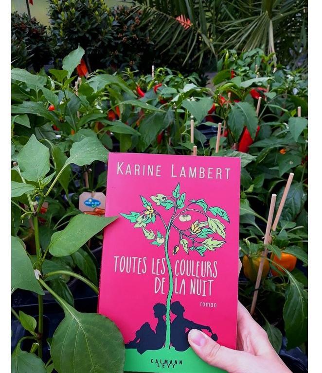 """""""Toutes les couleurs de la nuit"""" de Karine Lambert"""