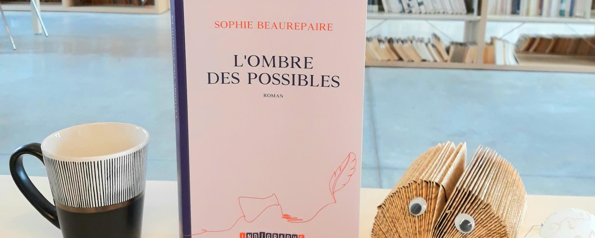 l'ombre des possibles Sophie Beaurepaire